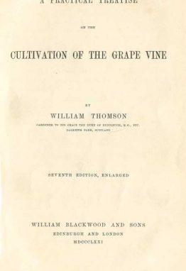 practical-treatise-grape-wine