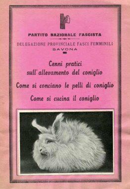coniglio736