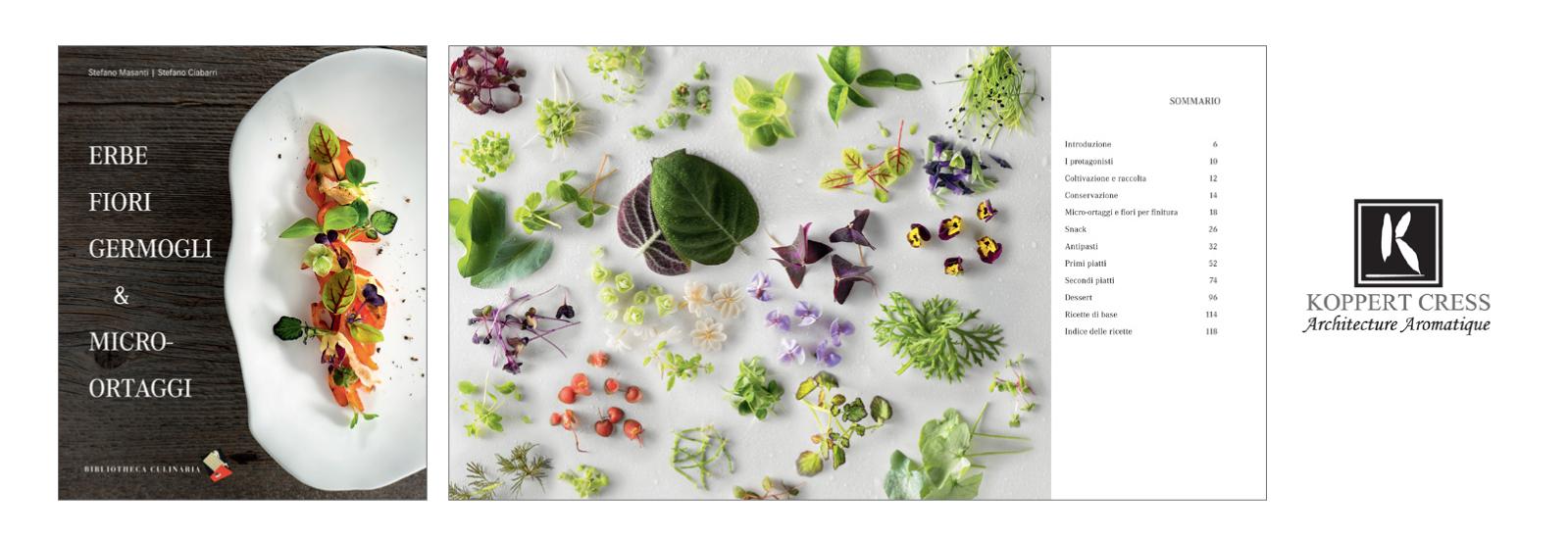 slider-Valorizzazioni-Erbe-fiori-germogli
